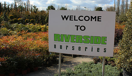 Welcome to Riverside Nurseries