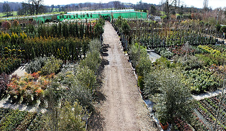 Riverside Nurseries for Traders Overview